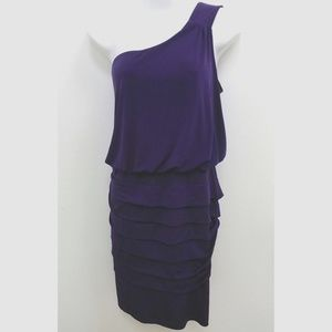 Valerie Bertinelli Cocktail Dress Purple  Sz 14